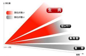 ドッグフードの消化吸収率の違いを表したグラフの画像