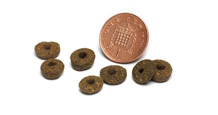 ピッコロドッグフードの粒の大きさと形の口コミ