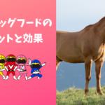 馬肉ドッグフードの効果メリットと選び方