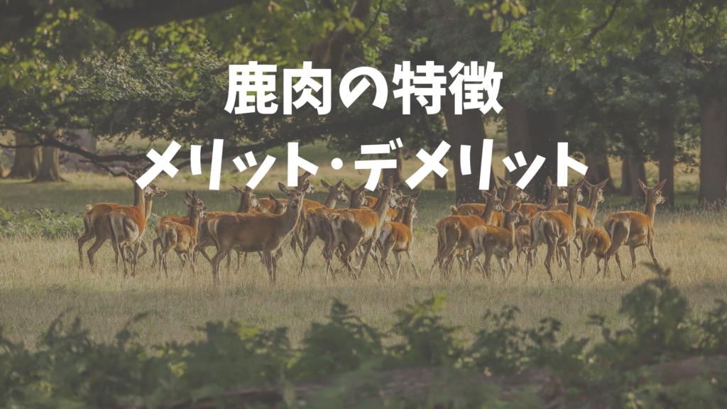 鹿肉ドッグフードの特徴と効果