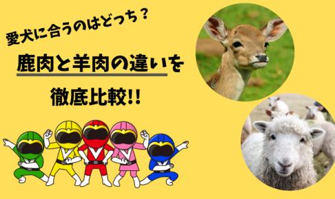 ドッグフードの鹿肉と羊肉の違いを徹底比較